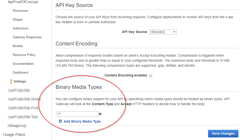 AWS Console - API Gateway Setting screen with Binary Media Types highlighted and set to